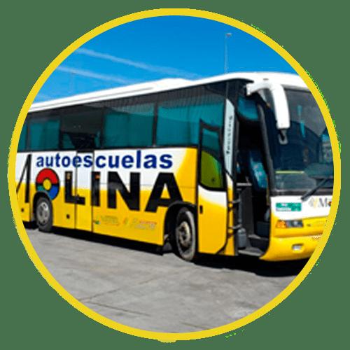 permiso-autobus-D-malaga carnet